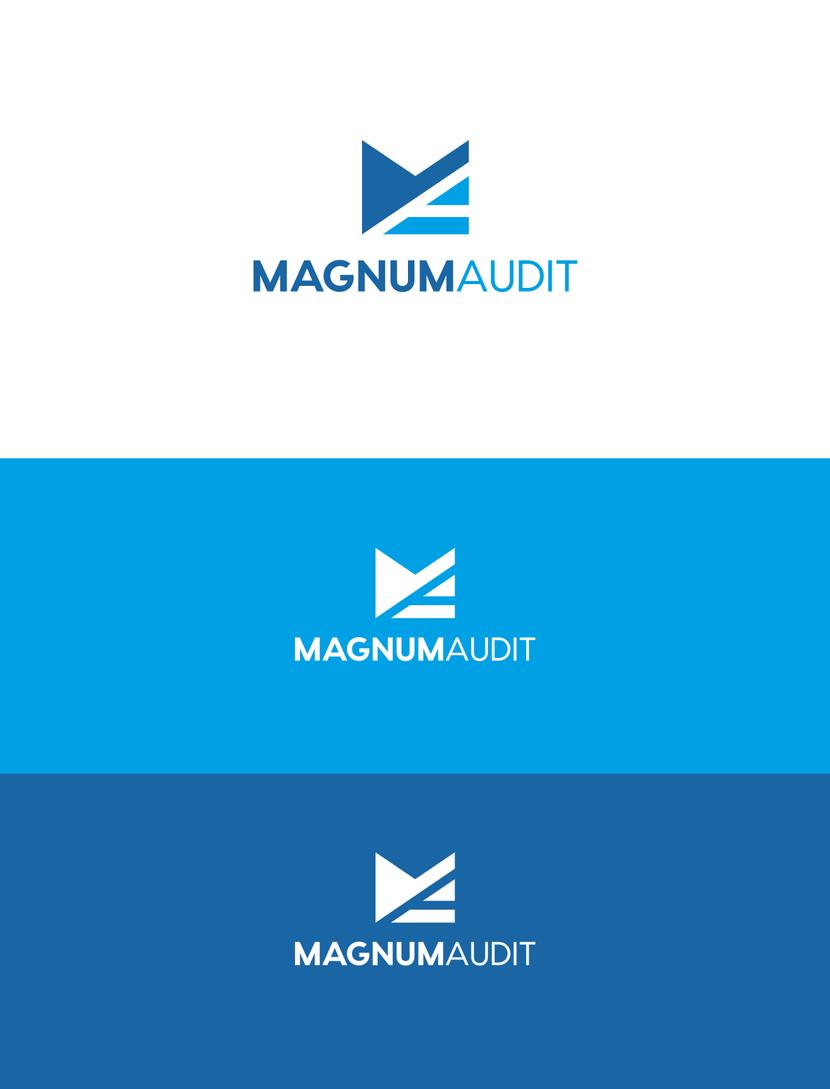 логотипы аудиторских фирм картинки настолько много, что
