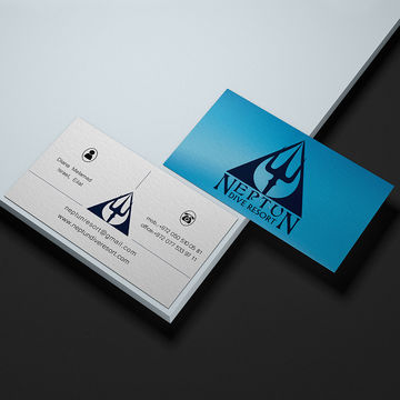 Neptun dive resort logo and business card